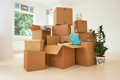 relocation moving movers boxes